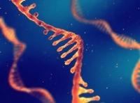 News: 8個Q&A 拆解mRNA循環腫瘤細胞檢測