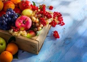 News: 而家食乜日本生果好?附時令水果時間表