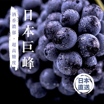 Picture of Aplex Japanese Kyoho Grapes