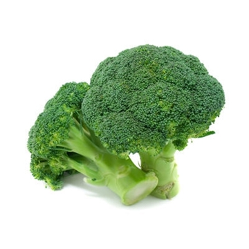 Picture of Dr. Fruits Aichi Broccoli 2 pcs