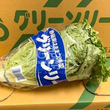 圖片 Dr. Fruits 靜岡縣新鮮生菜 2個