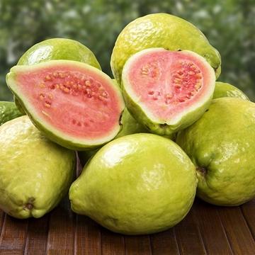 圖片 Dr. Fruits 台灣紅心芭樂(番石榴) 4個