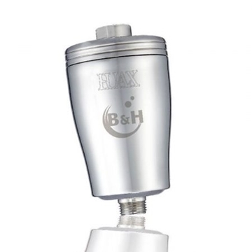 Picture of B&H Stainless Steel Spa Shower Filter