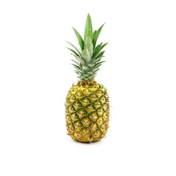 Picture of Fresh Checked Philippines Pineapple (1.5-2kg)