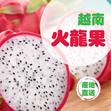 Picture of Fresh Checked Vietnam Dragon Fruit (L) 500g*3