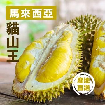 圖片 Fresh Checked 馬來西亞貓山王榴槤 (約10公斤, 5-6隻) 1箱