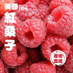 Fresh Checked USA Rasberry 170g