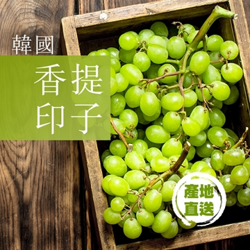 Picture of [From Korean] Shine Muscat grapes 450g 1 Box