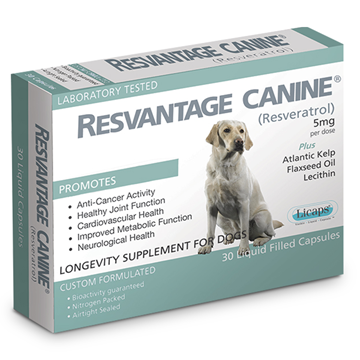 Picture of Resvantage Canine 30 Caps