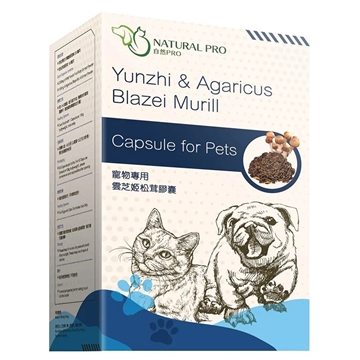 Picture of NATURAL PRO Yunchi & Agaricus Blazei Murill Capsule for Pets 60 Capsules
