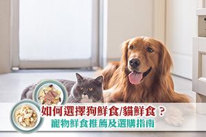 News: 如何選擇狗鮮食/貓鮮食?寵物鮮食推薦及選購指南