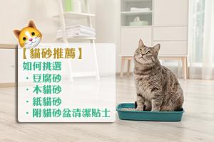 News: 【貓砂推薦】如何挑選豆腐砂、木貓砂、紙貓砂 | 附貓砂盆清潔貼士