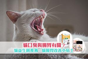 News: 貓口臭與腸胃有關?貓益生菌推薦 | 貓腸胃改善小貼士