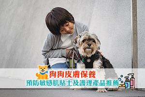 News: 【狗狗皮膚保養】預防敏感肌貼士 附毛起來洗護理產品推薦
