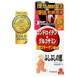 Fine Japan Chondroitin & Glucosamine 545's