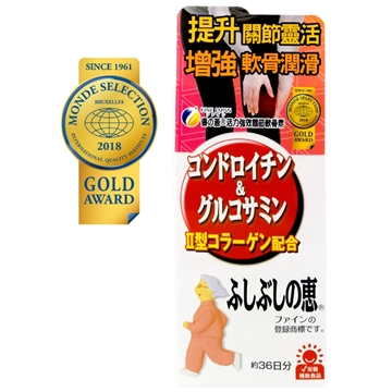 Picture of Fine Japan Chondroitin & Glucosamine 545's