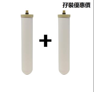 Picture of Doulton Dalton BioTect Ultra BTU 2504 10-inch diatom ceramic filter (2 unit price)