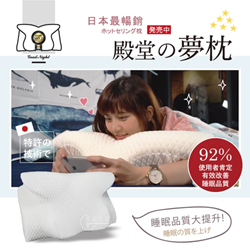 Hot-selling Palace Dream Pillow in Japan (an extra pillow case included)