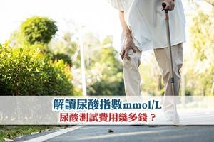 解讀尿酸指數mmol/L 尿酸測試費用幾多錢?
